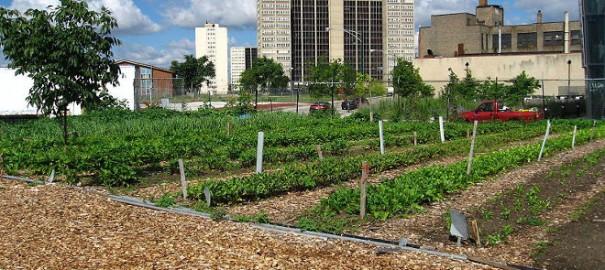 Detroit, del colapso a la reinvención de la ciudad