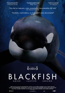 [Imagen: Blackfish-210x300.jpg]